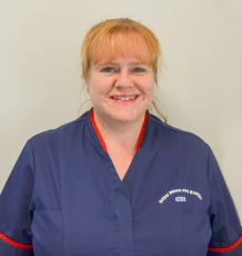 Dr Anna Steele