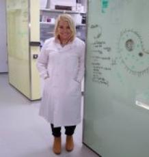 Dr Karolina Jaworek
