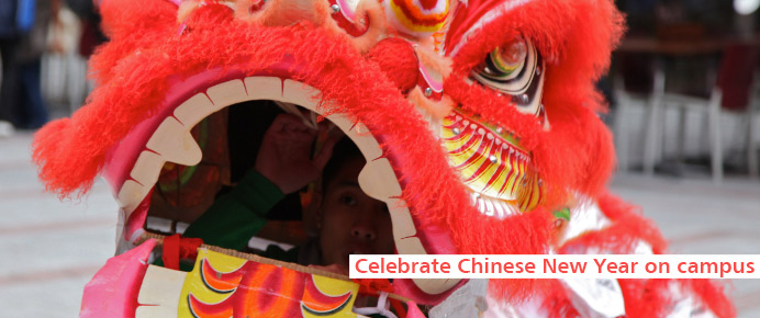 Find out more about Chinese New Year