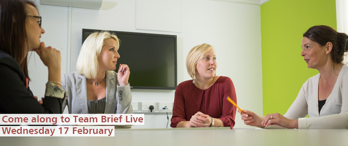 Find out more about Team Brief