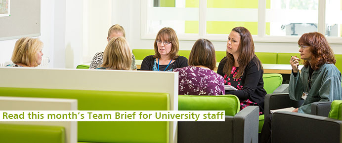 Find out about Team Brief