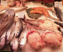 fish market main